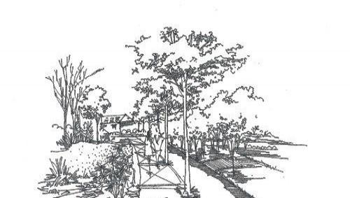 透视学原理  1,一点透视,两点透视,散点透视;  2,室内和园林景观手绘